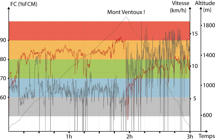 Le détail de la fréquence cardiaque, la vitesse et l'altitude pendant la sortie.