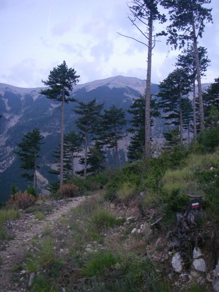 Première vue sur le sommet après une demi-heure environ de montée.